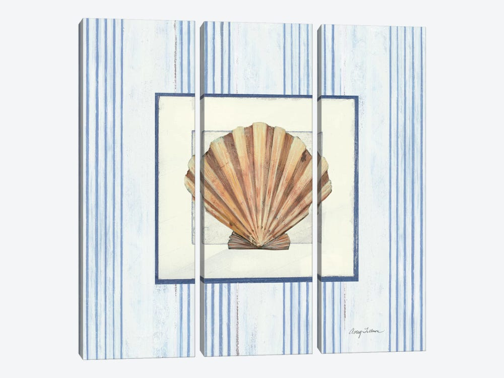 Sanibel Shell I 3-piece Canvas Art