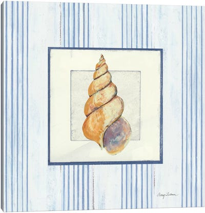 Sanibel Shell II Canvas Art Print