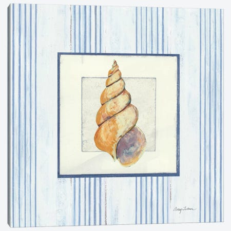 Sanibel Shell II 3-Piece Canvas #WAC1621} by Wild Apple Portfolio Art Print