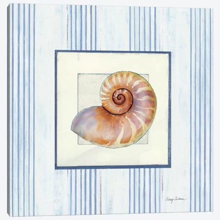 Sanibel Shell III 3-Piece Canvas #WAC1622} by Wild Apple Portfolio Canvas Print
