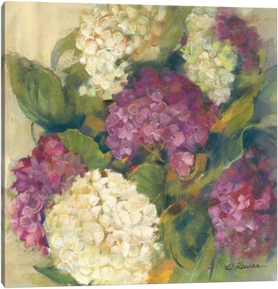 Hydrangea Delight I Canvas Art Print
