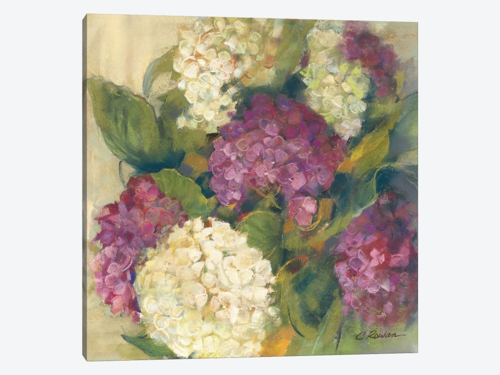 Hydrangea Delight I by Carol Rowan 1-piece Canvas Artwork