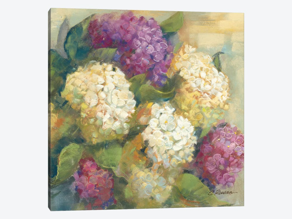 Hydrangea Delight II by Carol Rowan 1-piece Art Print