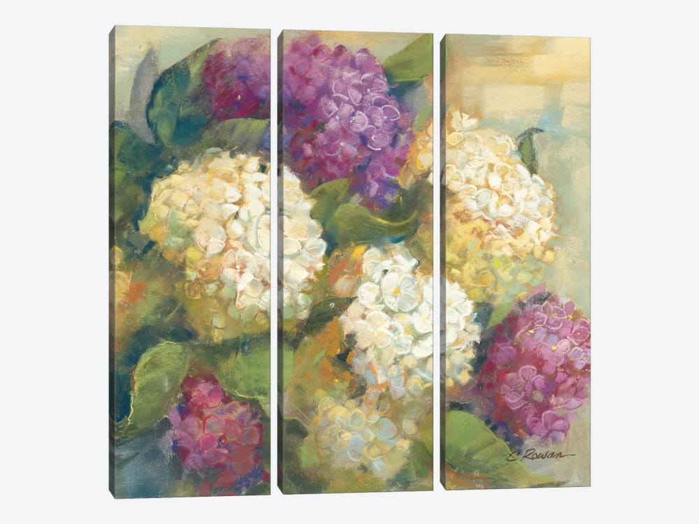 Hydrangea Delight II by Carol Rowan 3-piece Art Print