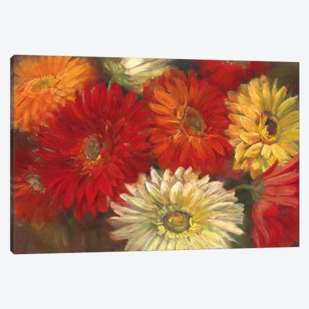 Gerberas Canvas Print #WAC1648} by Carol Rowan Canvas Art Print