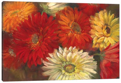 Gerberas Canvas Art Print