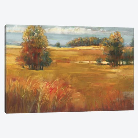 October Light Canvas Print #WAC1649} by Carol Rowan Art Print