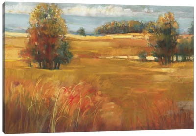 October Light Canvas Art Print