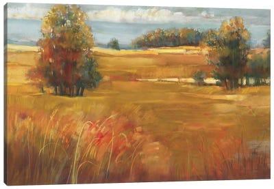 October Light Canvas Art Print