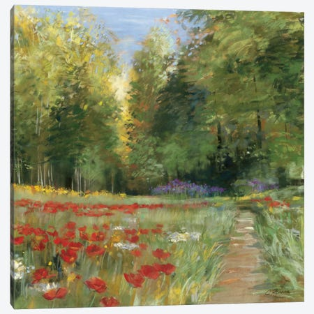 Field of Flowers Canvas Print #WAC1650} by Carol Rowan Canvas Artwork
