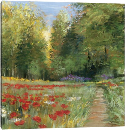 Field of Flowers Canvas Art Print