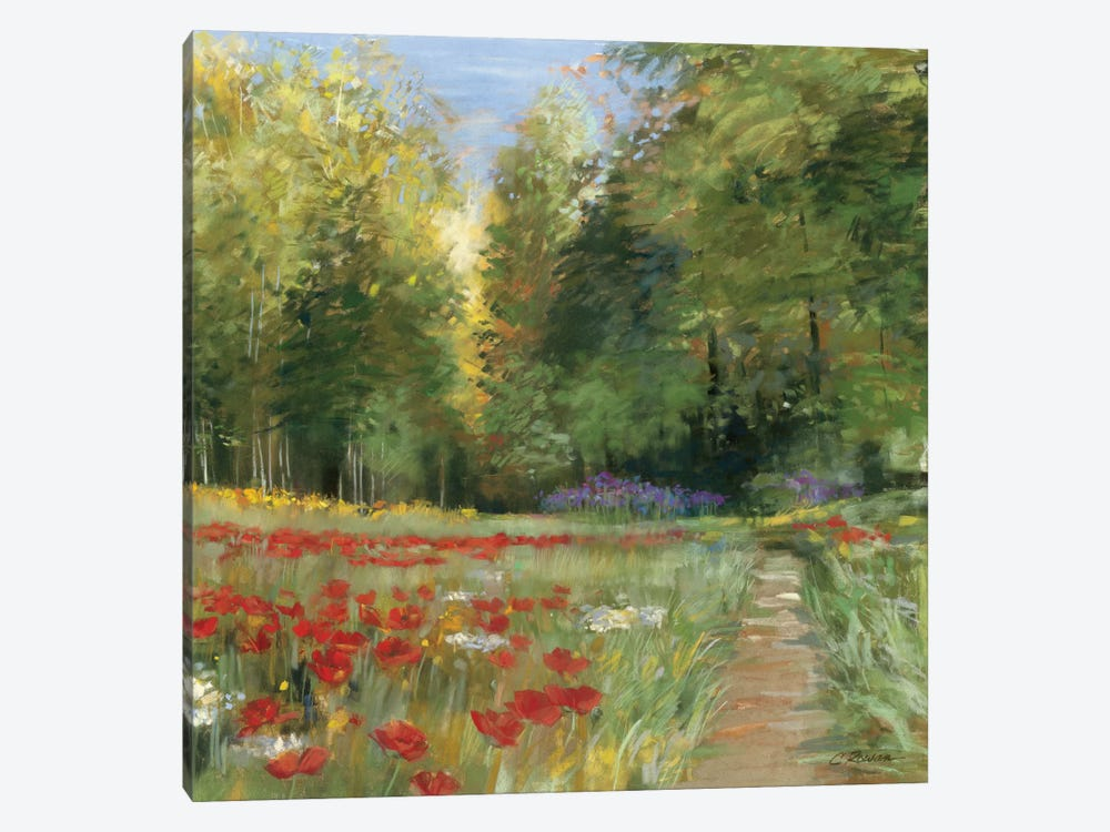 Field of Flowers by Carol Rowan 1-piece Canvas Art Print