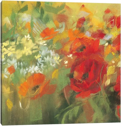 Oriental Poppy Field II Canvas Art Print