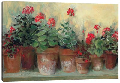 Kathleen's Geraniums Canvas Art Print