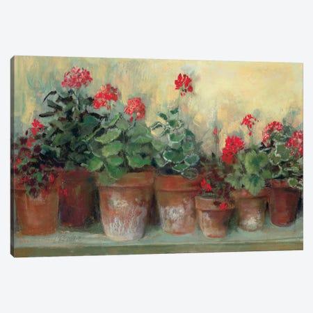 Kathleen's Geraniums Canvas Print #WAC1655} by Carol Rowan Art Print