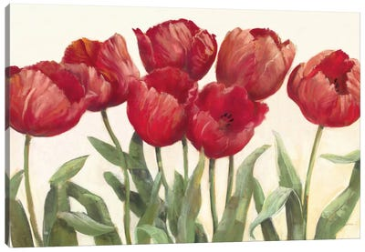 Ruby Tulips Canvas Art Print