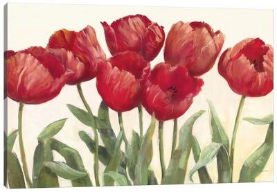 Ruby Tulips Canvas Print #WAC1656