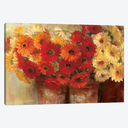 Chelsea Gerberas Canvas Print #WAC1658} by Carol Rowan Canvas Art