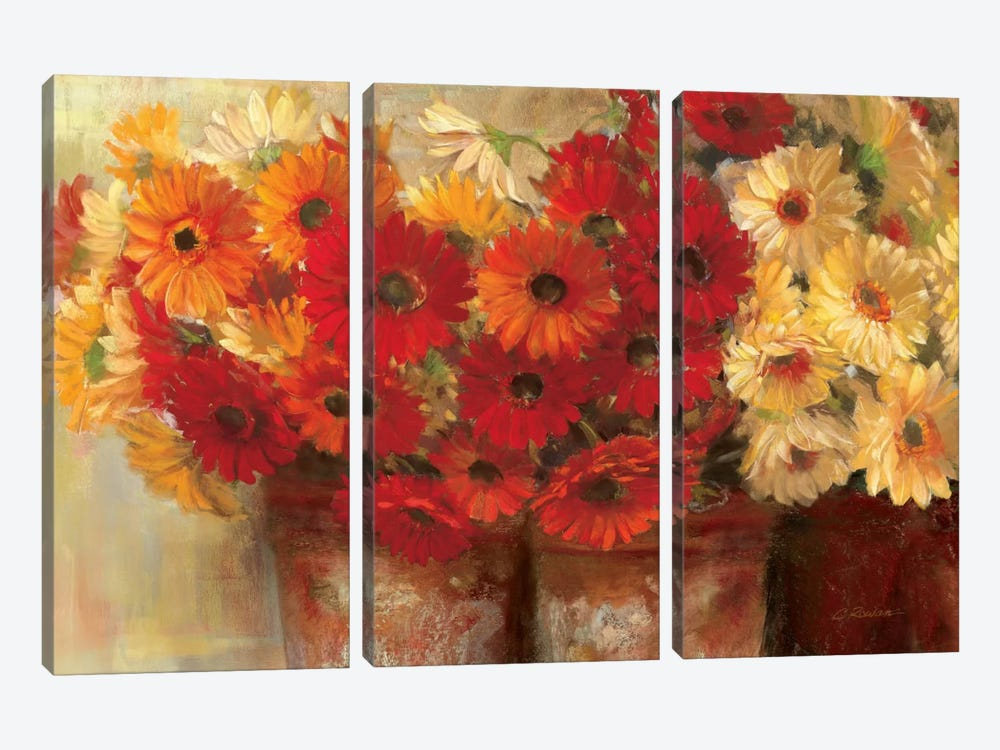 Chelsea Gerberas 3-piece Canvas Art Print