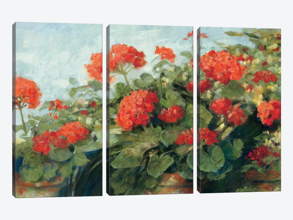 Geranium Wave by Carol Rowan 3-piece Canvas Art