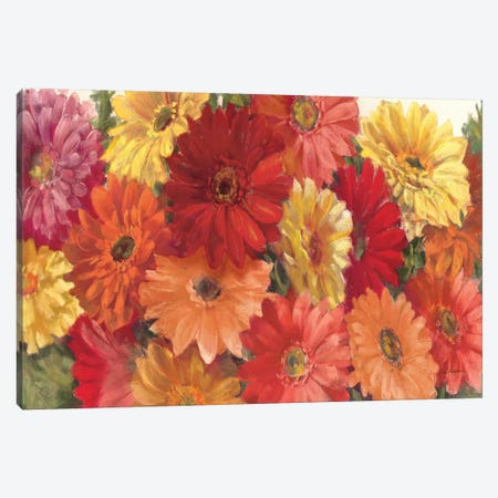Bountiful Gerberas Crop Canvas Print #WAC1660} by Carol Rowan Canvas Print