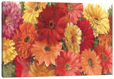 Bountiful Gerberas Crop Canvas Art Print