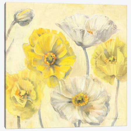 Gold and White Contemporary Poppies II Canvas Print #WAC1662} by Carol Rowan Canvas Art Print