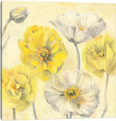 Gold and White Contemporary Poppies II Canvas Art Print
