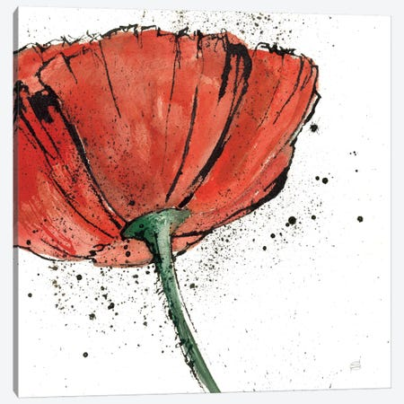 Not a California Poppy I Canvas Print #WAC1668} by Chris Paschke Canvas Art Print