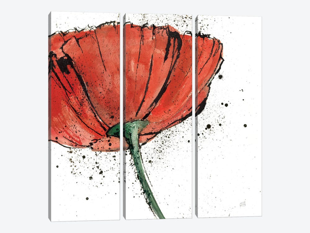 Not a California Poppy I by Chris Paschke 3-piece Canvas Art
