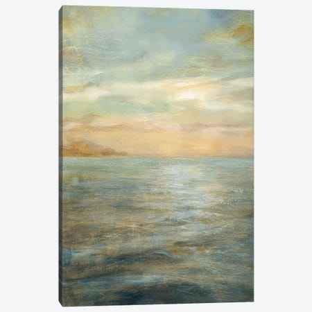 Serene Sea II Canvas Print #WAC166} by Danhui Nai Canvas Art