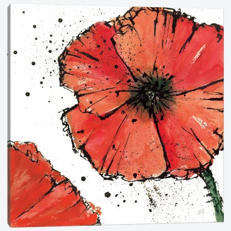 Not a California Poppy IV Canvas Print #WAC1670} by Chris Paschke Canvas Artwork