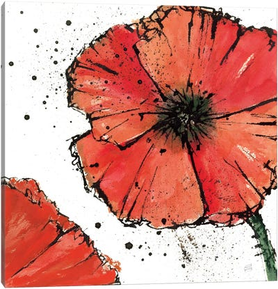 Not a California Poppy IV Canvas Art Print