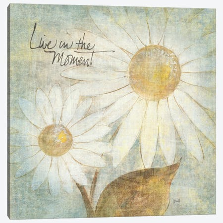 Daisy Do III (Live in the Moment) Canvas Print #WAC1671} by Chris Paschke Canvas Artwork