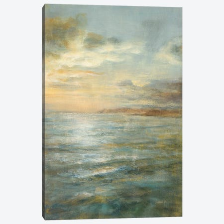 Serene Sea III Canvas Print #WAC167} by Danhui Nai Canvas Artwork