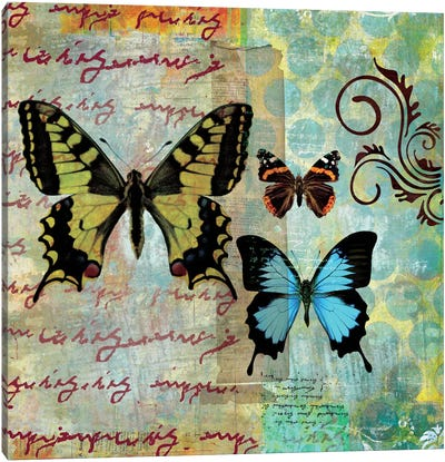 Homespun Butterfly I Canvas Print #WAC1701