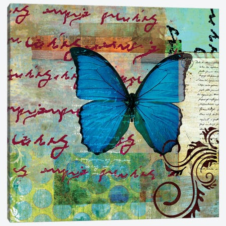 Homespun Butterfly II Canvas Print #WAC1702} by Dominic Orologio Canvas Art