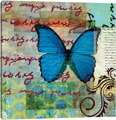 Homespun Butterfly II Canvas Art Print