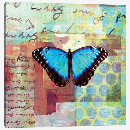 Homespun Butterfly III Canvas Print #WAC1703} by Dominic Orologio Canvas Art