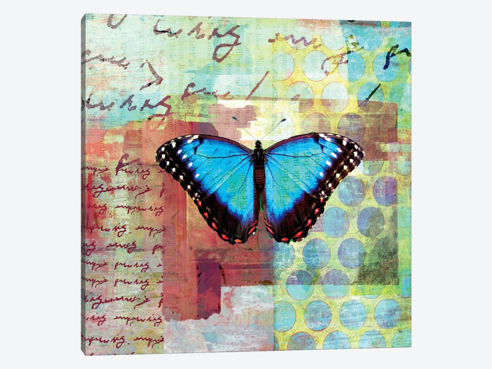 Homespun Butterfly III by Dominic Orologio 1-piece Canvas Wall Art