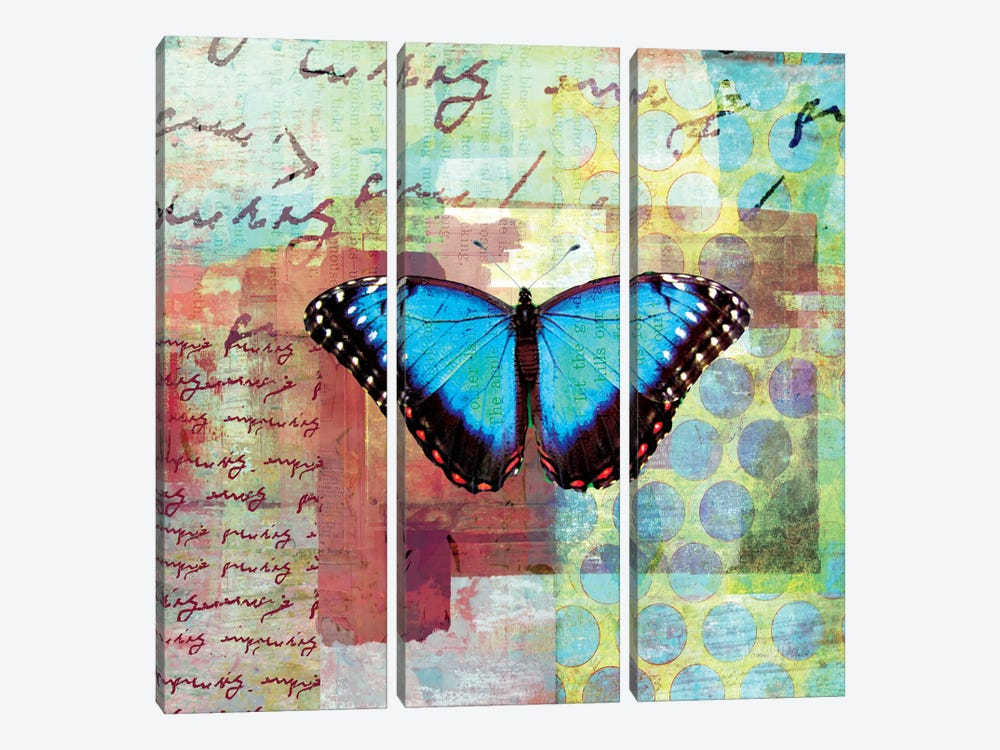 Homespun Butterfly III by Dominic Orologio 3-piece Canvas Artwork
