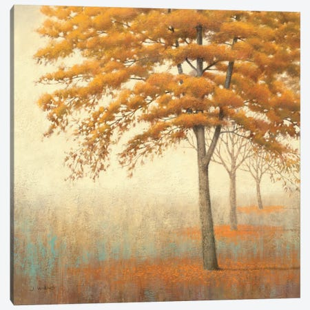 Autumn Trees I Canvas Print #WAC1706} by James Wiens Canvas Art Print