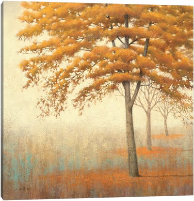 Autumn Trees I Canvas Art Print