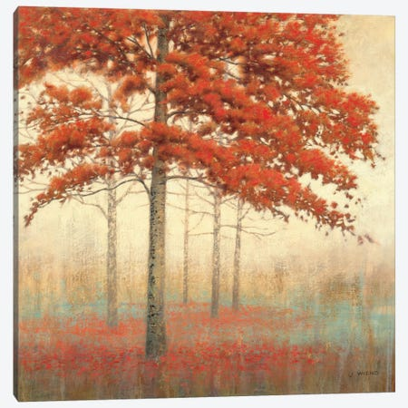 Autumn Trees II Canvas Print #WAC1707} by James Wiens Canvas Art Print