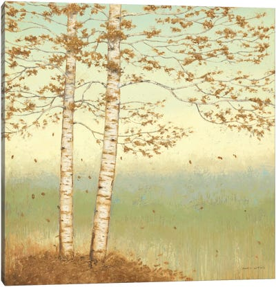 Golden Birch I with Blue Sky Canvas Art Print