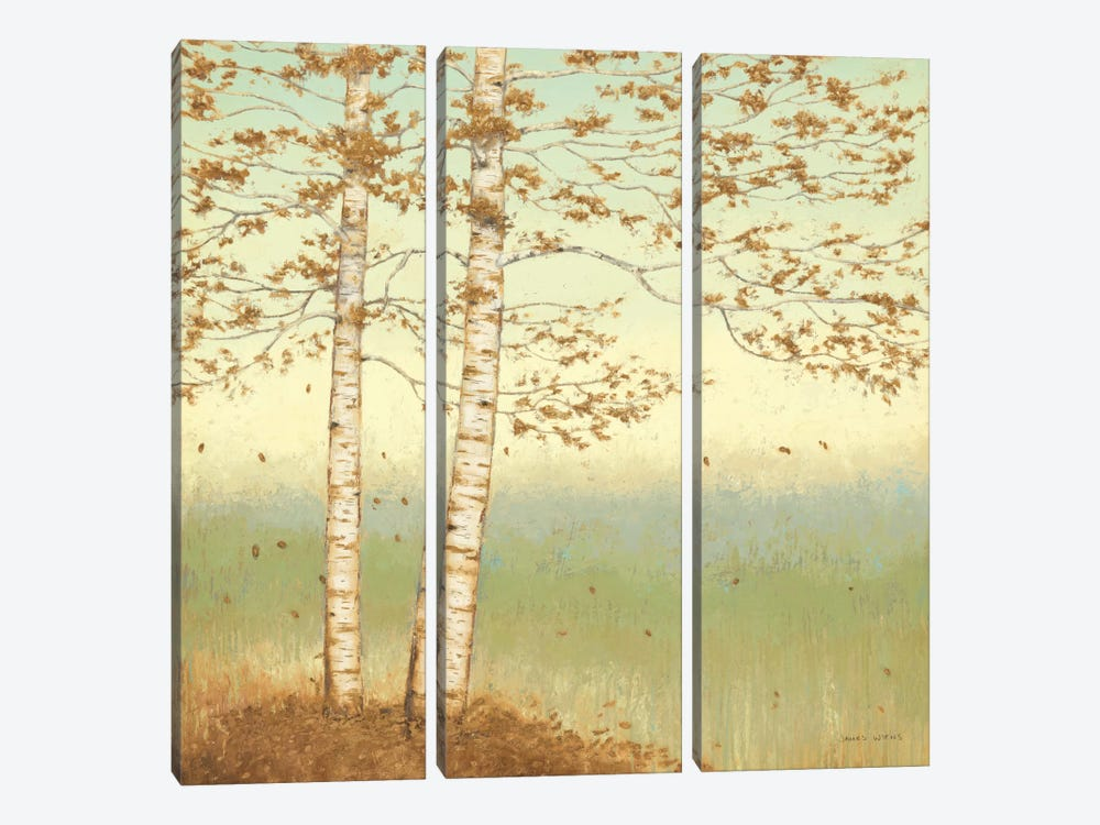 Golden Birch I with Blue Sky by James Wiens 3-piece Canvas Wall Art
