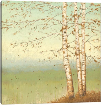 Golden Birch II with Blue Sky Canvas Art Print