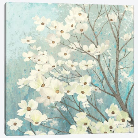 Dogwood Blossoms I Canvas Print #WAC1716} by James Wiens Canvas Wall Art