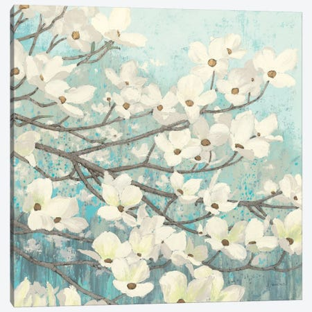 Dogwood Blossoms II Canvas Print #WAC1717} by James Wiens Canvas Wall Art