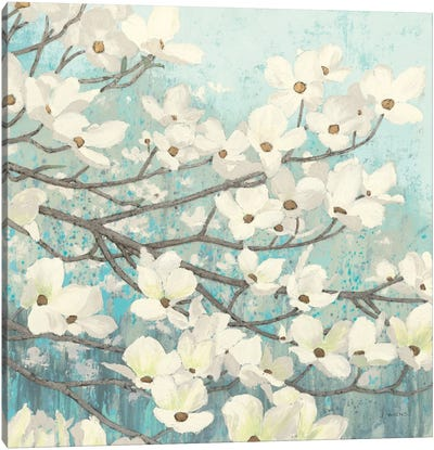 Dogwood Blossoms II Canvas Art Print
